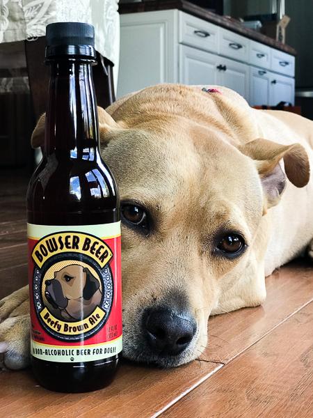 Pumpkin Spice Pretzels and Dog Beer