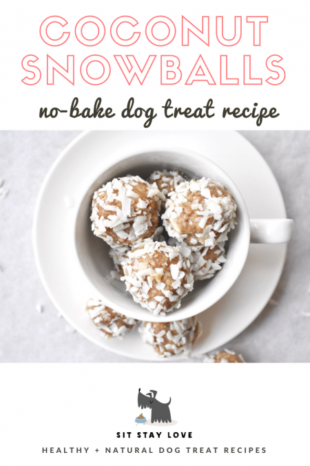 coconut snowballs easy dog treat recipe homemade
