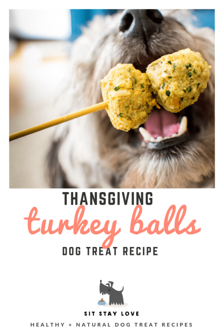 Close up of a dog about to take a bite of turkey meatballs on a stick